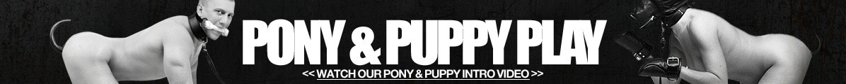 Pony & Puppy Play